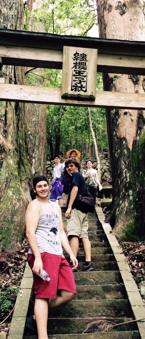 students climbing stairs in a forest