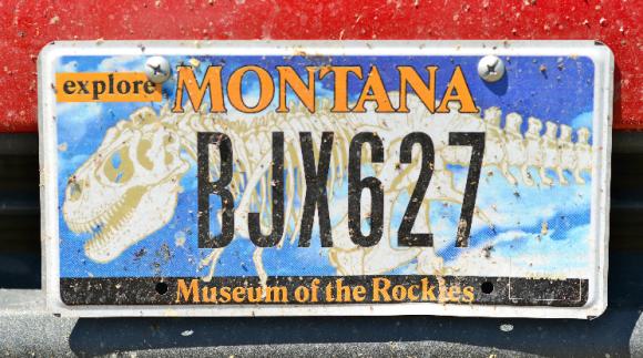jacks-license-plate