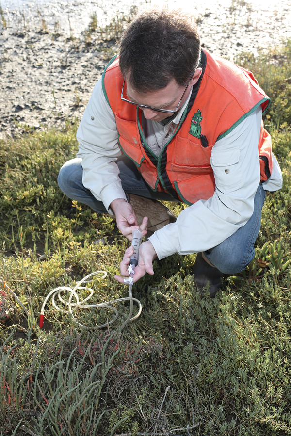 "Studying connections between peatlands and the global environment allows researchers to consider a ""wide range of possible futures,"" Professor Jason Keller says."