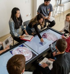 Virtual cadaver tables are among the tools used by students in Chapman's new neuroscience minor. Students may choose from more than 60 minors and have the opportunity to create custom minors as well.