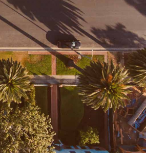 Overhead image of palm trees and a suburban street.