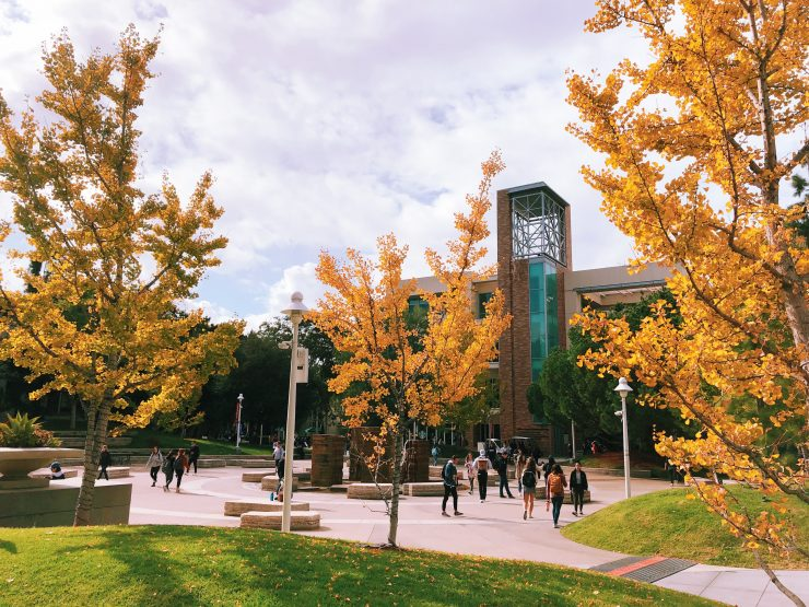 fall feel at Chapman