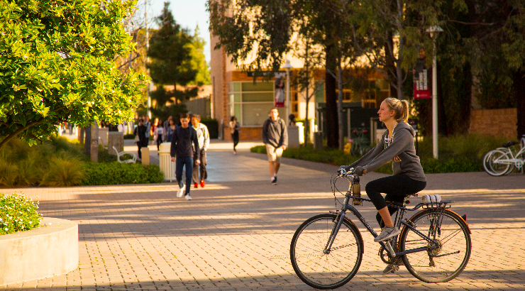 Student riding a bicycle on campus.
