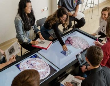chapman students gather around virutal anatomy lab table